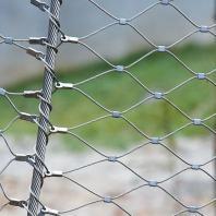 Filet de Cable inox et Mur Végétalisé