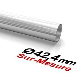 IN101-ø-42-4mm