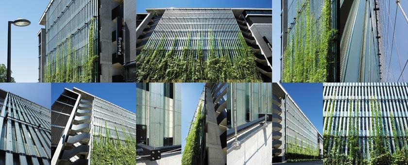 vegetalisation de façade